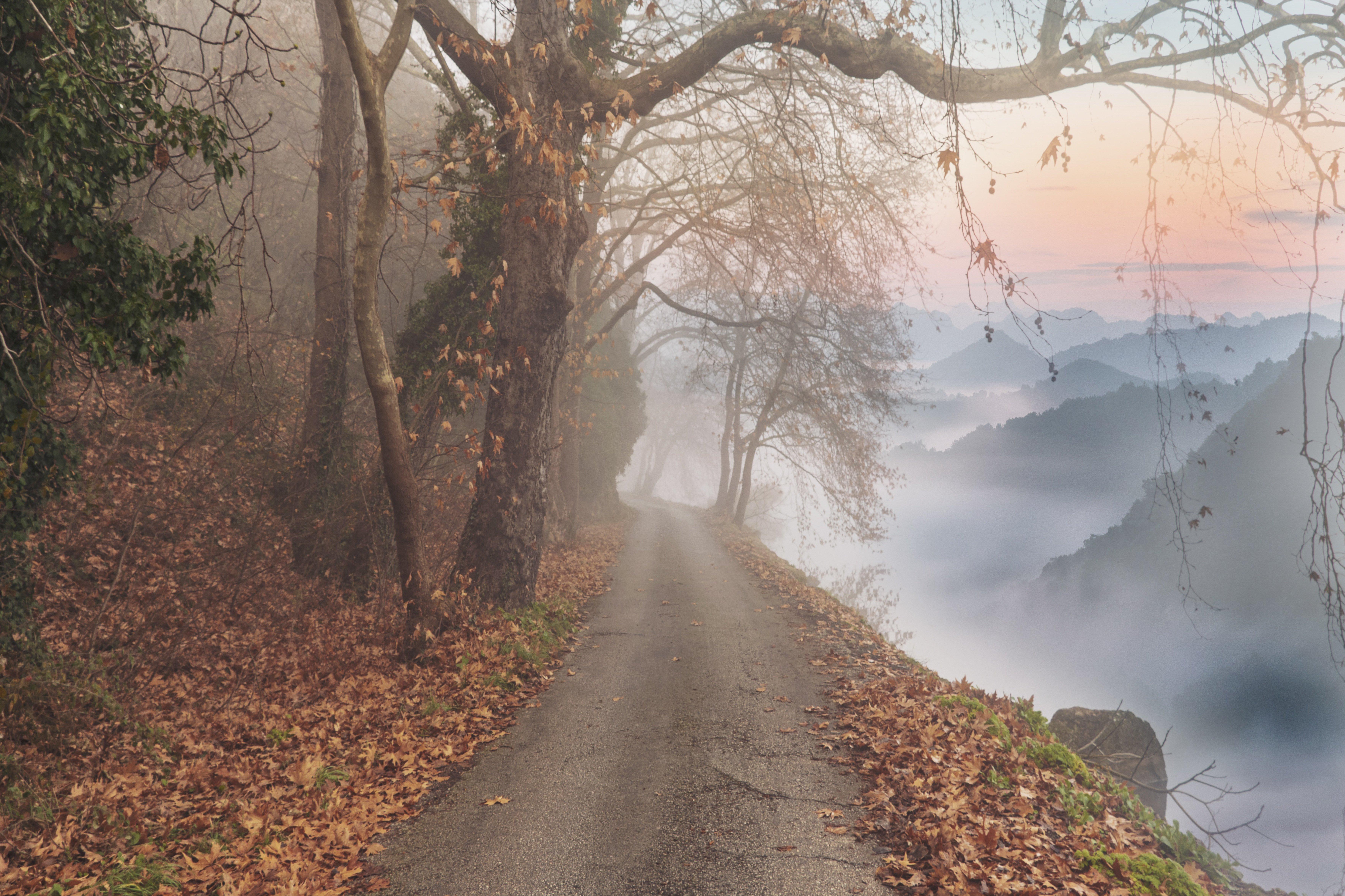 该图片由enriquelopezgarre在Pixabay上发布